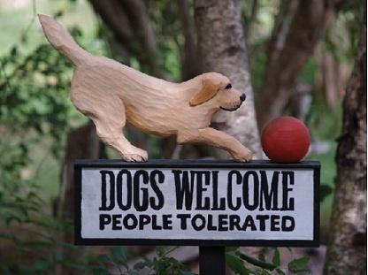 Animal Medical Clinic of Chesapeake 921 Battlefield Blvd, Chesapeake, Va 23320 - Pets Welcome